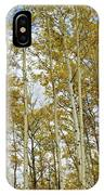 Falling For The Birch And Aspens IPhone Case