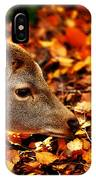 Fawn In Autumn IPhone Case