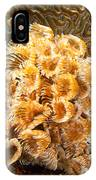 Featherduster IPhone Case