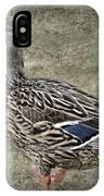 Female Mallard Duck Low Saturation IPhone Case