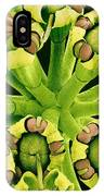Fennel Flowers, Sem IPhone Case