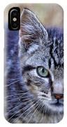 Feral Kitten IPhone Case