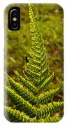 Fern Frond And Sporangia 1 IPhone Case
