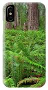 Ferns And Redwoods IPhone Case