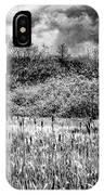 Field Of Cattails II IPhone Case