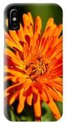 Firey Sunburst IPhone Case