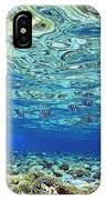 Fish And Coral Underwater Reflected In IPhone Case