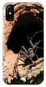 Fish Eating Spider IPhone Case