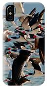 Flock Of Terns IPhone Case