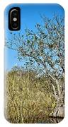 Florida Everglades 8 IPhone Case