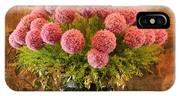 Flower Arrangement Chateau Chenonceau IPhone Case