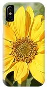 Flower Painting 0010 IPhone Case