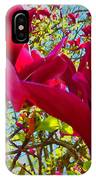 Flower-tree-the Tulip Tree IPhone Case