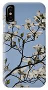 Flowering Dogwood IPhone Case