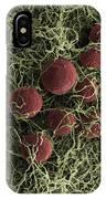 Flowers, Digital Streak Image IPhone Case