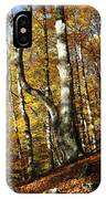 Forest Fall Colors 4 IPhone Case