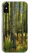 Forest Floor In Autumn, Bow Valley IPhone Case
