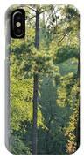 Forest Illumination At Sunset IPhone Case