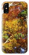 Forest In Autumn Bavaria Germany IPhone Case