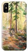 Forest Light Triptych IPhone Case