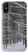 Forest Of Marburg In Winter IPhone Case