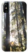 Forest Sun Rays In Olympic National Park IPhone Case