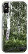 Forever Aspen Trees IPhone Case