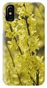 Forsythia In Full Bloom IPhone Case