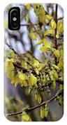 Forsythia 'minigold' Flowers IPhone Case