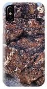 Fossil Tree IPhone Case