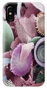Fossilised Diatoms, Sem IPhone Case