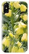 Fritillaria Pallidiflora IPhone Case