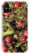 Frog Peaks Up Through Cranberries In Bog IPhone Case