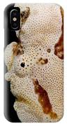 Frogfish Face IPhone Case