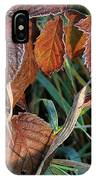 Frost On Leaves No. 2 IPhone Case