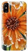 Frosty Flower IPhone Case