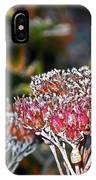 Frosty Morning IPhone Case
