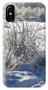 Frozen Winter Landscape IPhone Case