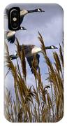 Geese Coming In For A Landing IPhone Case