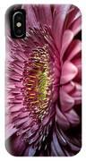 Gerburple Daisy IPhone Case