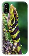 Giant Anole Dactyloa Microtus Male IPhone Case