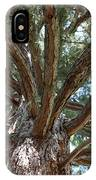 Giant Sequoias IPhone Case