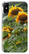 Giant Sunflowers IPhone Case