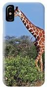 Giraffe Against Blue Sky IPhone Case