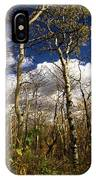 Glacier Aspens IPhone Case