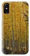 Glorious Aspens IPhone Case
