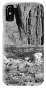 Goat Herd On Mount Evans IPhone Case