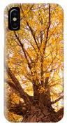 Golden Autumn View IPhone Case