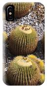 Golden Barrel Cactus 2 IPhone Case