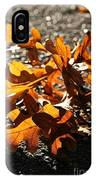 Golden Oak Shadows IPhone Case